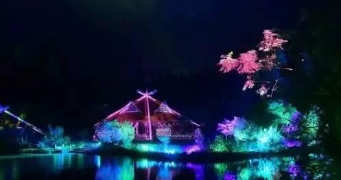 崇明梦幻森林灯光秀     超大型水幕投影,全息投影,裸眼3d投影