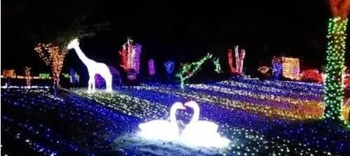 分别是七彩灯海,绮丽雪山,银河玫瑰园,萤火虫森林,梦幻灯光区,感应